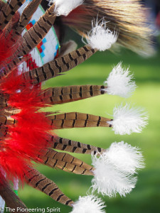 Feathers from traditional Native American Indian head dress