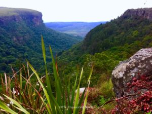 Blyde River Canyon from the camp ground we stayed at.